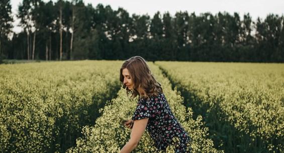 Finland_autumn_cornfield_EmiliaHoisko.jpg